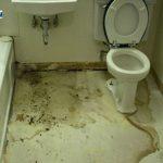 Nguyên nhân nhà vệ sinh bị thấm