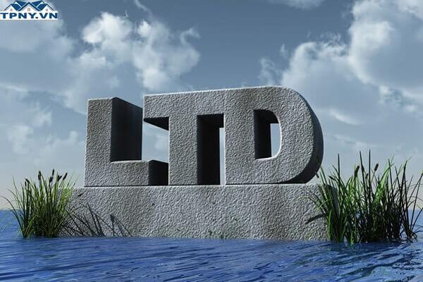 Ltd là gì? CO Ltd là gì? Những ưu và nhược điểm của công ty TNHH