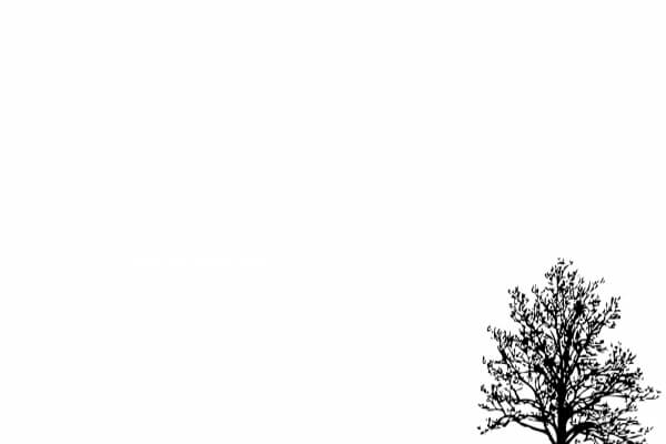 Background đơn giản